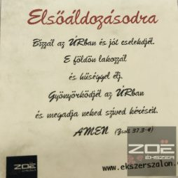 ELSŐÁLDOZÁSRA IDÉZET 1.